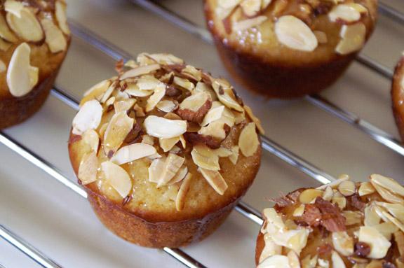 honeybee cupcakes.