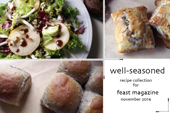 well seasoned: recipe collection for feast magazine november 2014.